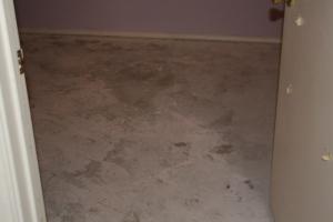 floor under the carpet